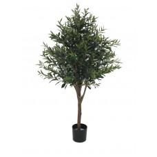 Alyvuogių medis EUROPALMS Olive tree, 130cm
