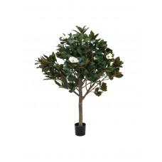 Dirbtinė magnolija EUROPALMS Magnolia tree, 150cm