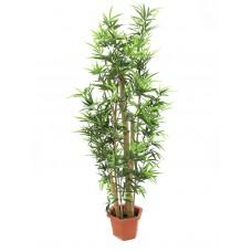 Dirbtinis bambuko medis EUROPALMS Bamboo with natural stalks, 150cm