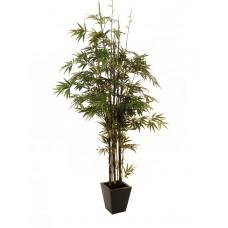 Dirbtinio bambuko medis EUROPALMS Bamboo black trunk, 240cm