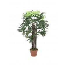 Dirbtinė EUROPALMS Rhaphis palmė, 90cm