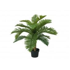 Dirbtinė ciko palmė, 70cm