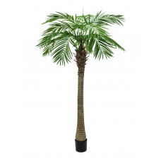 Dirbtinė palmė Phoenix  luxor, 210cm