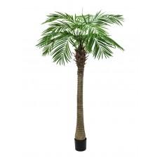 Dirbtinė palmė EUROPALMS Phoenix palm tree luxor, 300cm