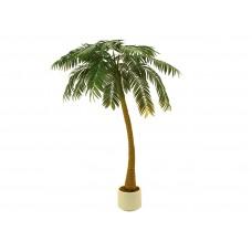 Dirbtinė palmė 300cm