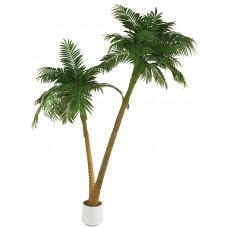 Dirbtinė palmė dviejų kamienų, 305cm