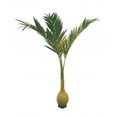 Dirbtinė palmė EUROPALMS  300cm