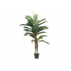 Dirbtinė Kentijos palmė 120cm