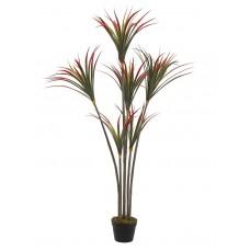 Dirbtinė juka EUROPALMS Yucca palmė, 150cm