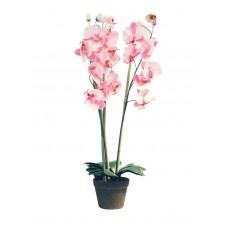 Dekoratyvinė orchidėja EUROPALMS rožinė, 80cm