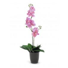 Dirbtinė orchidėja vazone EUROPALMS rožinė, 57cm