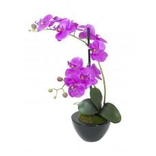 Dirbtinė orchidėjų kompozija EUROPALMS