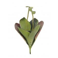 Dirbtinė vandens lelija EUROPALMS Water Lily (EVA), closed, green, 45cm