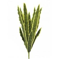 Dirbtinis augalas EUROPALMS Sansevieria (EVA), green-yellow, 50cm