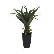 Dirbtinė Agava su dekoratyviniu vazonu, 75cm