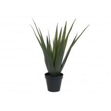 Dirbtinis alavijas EUROPALMS Aloe vera, 60cm
