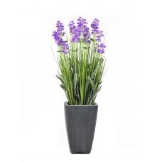 Dirbtinė levanda EUROPALMS violetinė, vazonėlyje, 45cm
