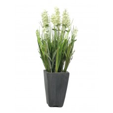 Dirbtinė levanda EUROPALMS Lavender, cream, vazonėlyje, 45cm
