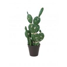 Dirbtiniai kaktusai EUROPALMS Mixed cactuses, 54cm