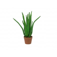 Dirbtinė Aloe EUROPALMS Aloe Vera Plant, 63cm