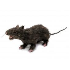Dirbtinė žiurkė su kailiu EUROPALMS Rat, lifelike with coat 30cm