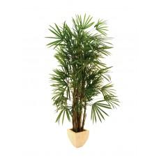 Dirbtinė Lady palmė 150cm